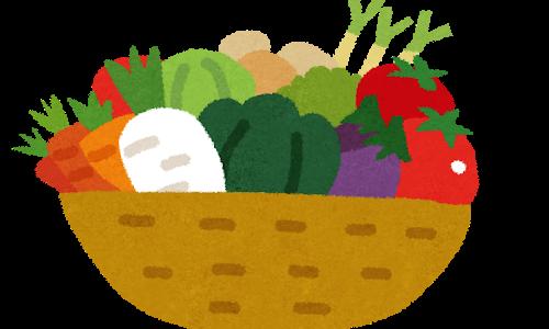 糖質制限中の野菜は何を食べたらおすすめ?定番野菜の糖質一覧を管理栄養士が解説