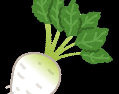 糖質制限中の大根の効果的なレシピは?大根おろしや大根サラダ、ステーキや餃子の糖質を管理栄養士が解説